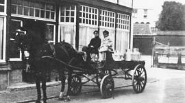 Oprichting Beuk Noordwijk in 1906, begonnen als melkwinkel