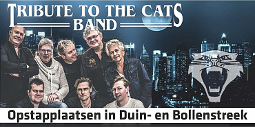 Tribute to the Cats Band