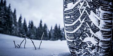 Winterinspectie
