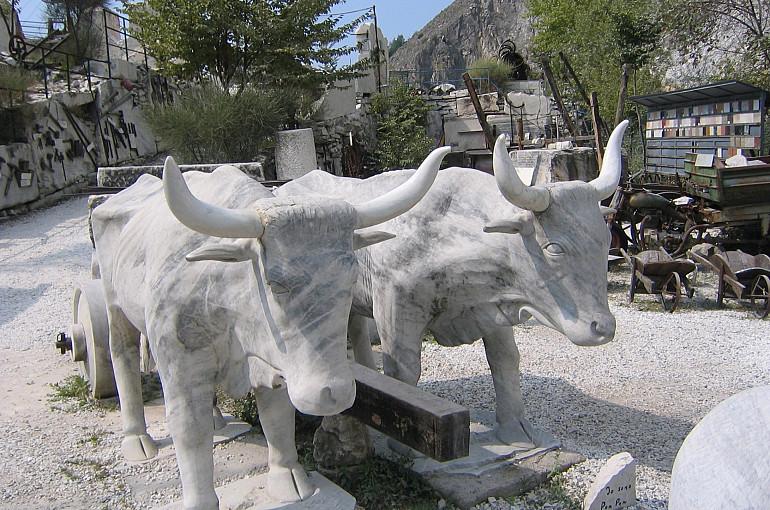 Koninklijke Beuk, Incentives, meerdaagse reis - Herfstkleuren Italie, Carrara