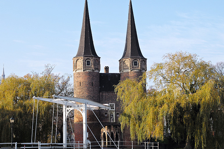 Royal cities, Delft and The Hague