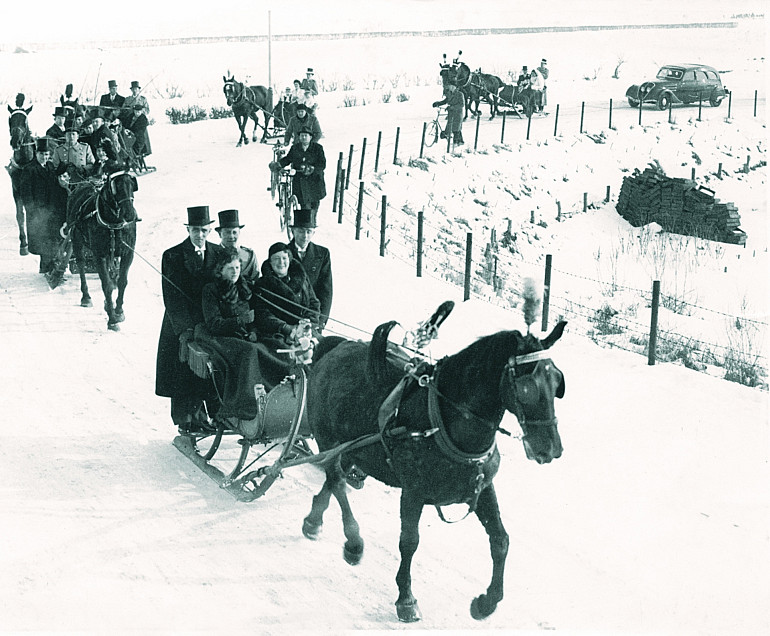 Stalhouderij Beuk Noordwijk verzorgt huwelijk Peeperkorn met arrensledes in 1940