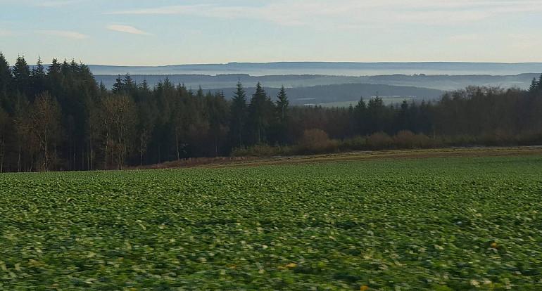 Koninklijke Beuk, Dagtochten, Meerdaagse reis - Wallonie, Ardennen